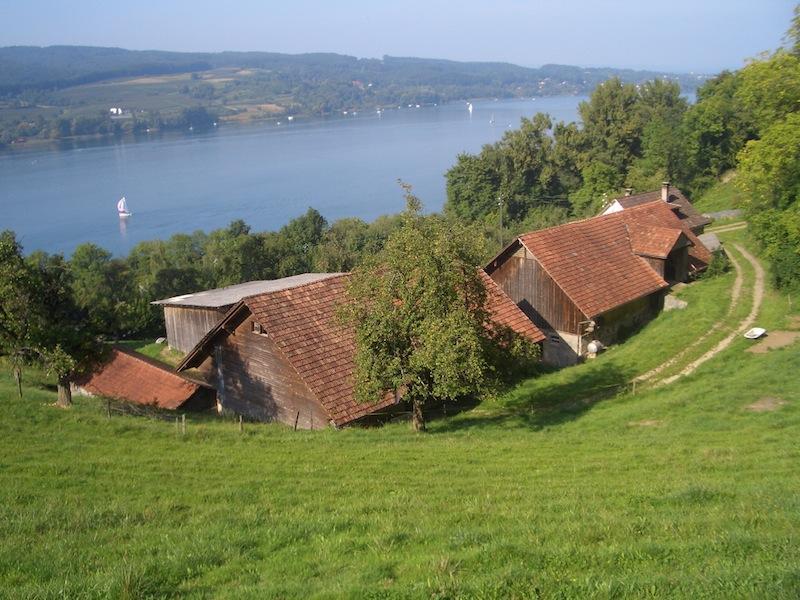 Rollirain Birkenhof